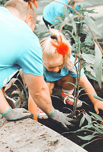 Planting flowers together