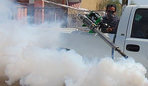 Spray Insecticides